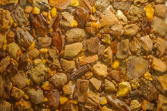 Background from small stones natural amber. Colors, yellow and orange Stock Photography