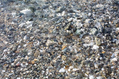 Background  with small stones under water Stock Photo