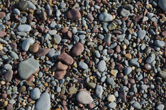 Background of smooth wet gravel and pebbles Royalty Free Stock Image