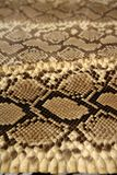 Background snake skin pattern brown Stock Photo