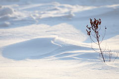 Background from snow shadows Royalty Free Stock Photos