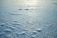 Background from snow shiny in the sun Stock Image