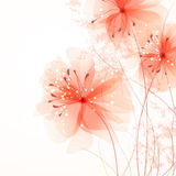 Background with soft flowers Royalty Free Stock Photos