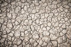 Background soil fissures Stock Images
