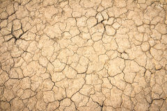 Background soil fissures Stock Photos