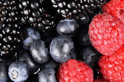 Background of sorted fresh various berries royalty free stock images