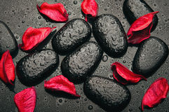 Background spa. black stones and red petals Stock Photos