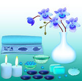 Background for spa with flowers salt and soap Stock Photography