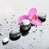 Background of a spa with stones, orchid flower Stock Images
