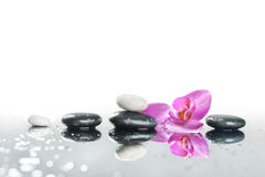 Background of a spa with stones. And orchid flower Stock Photo