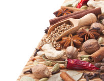 Background with spices and herbs Stock Image