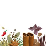 Background with spices Stock Image