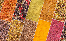 Background of spices Stock Images