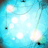 Background with spiders and web Stock Photos