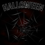 Background with spiders and web  Halloween Stock Photos