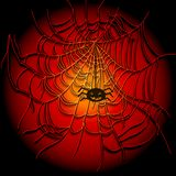 Background with spiders and web Stock Images