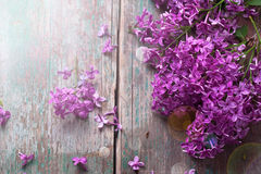 Background with splendid lilac flowers Stock Photo