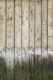Background and spoiled rotten wood Royalty Free Stock Images