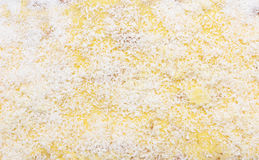 Background of sponge cake texture Stock Photos