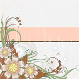 Background with spring flowers. Background with banner for your text and spring flowers Stock Photos