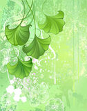 Background with spring green leaves Royalty Free Stock Photo