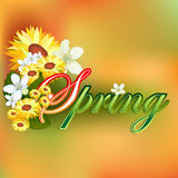 Background with Spring text garnished by many colorful flowers Royalty Free Stock Images