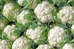 Background with stack of Cauliflower Stock Photos