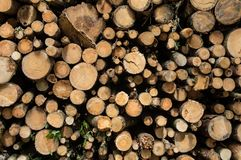 A background of a stack of logs stock photo