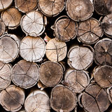 Background of stacked timber logs Royalty Free Stock Photography
