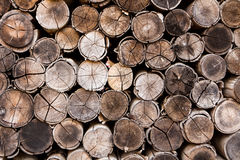 Background of stacked timber logs Royalty Free Stock Image