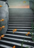 Background  with  stairs and goldfish. Royalty Free Stock Photo