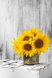Background still life flower sunflower wooden white vintage Royalty Free Stock Photography