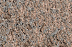 Background of the stone brown uneven rough in the drawing channels interesting ornament Royalty Free Stock Photos