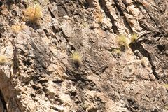 Background of stone cliff in the mountains.  Stock Photography
