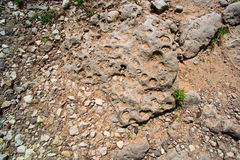 Stone with holes on the road Royalty Free Stock Photos