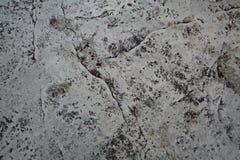 Background stone paving blocks Stock Photography