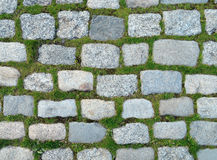 Background of stones and grass. Wall textured photo Royalty Free Stock Image