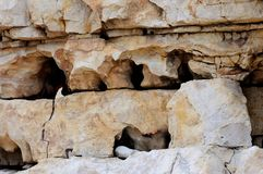 Background stratified and fractured limestone. Eroded by the sea and wind Stock Photography