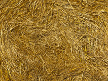 Background from a straw. Golden background from a bale of fresh straw Stock Images