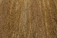 Background straw Royalty Free Stock Photo
