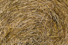 Background of straw Stock Images