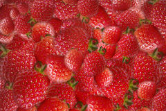 Background with strawberries Royalty Free Stock Photo
