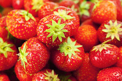Background of strawberries Stock Images