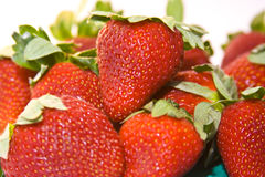 Background Of Strawberries Royalty Free Stock Photos