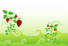 Background with strawberry Stock Photo