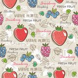 Background with  strawberry, blackberry, blueberry, vector Royalty Free Stock Photos