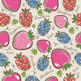 Background with  strawberry, blackberry and raspberry. Royalty Free Stock Photo