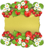 Background with strawberry Royalty Free Stock Photo