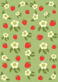 Background from strawberry and flowers Royalty Free Stock Images