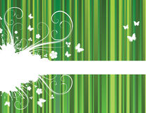 Background with stripes. Green floral background with stripes Stock Illustration